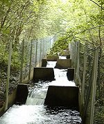 Salmon ladder next to the Fotland Waterfall